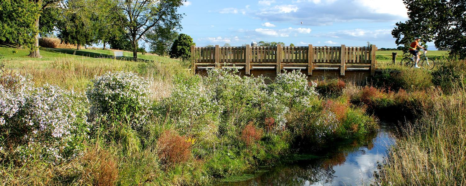 Stream and Bridge 1500×600