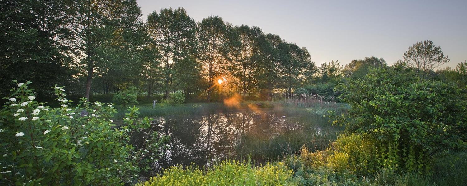 Lititz Run Riparian Park 1500×600