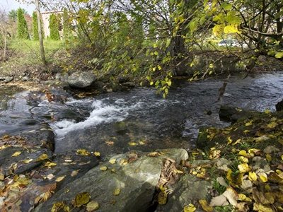 lititz-run-watershed-lititz-run-stream-riffle-400×300