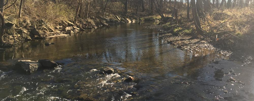 Herbert, Rowland & Grubic, Inc. (HRG) and LandStudies, Inc. Team Chosen to  Prepare Total Maximum Daily Load (TMDL) Plan for Paxton Creek