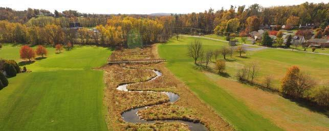 Parks can Play a Major Role in Managing Stormwater