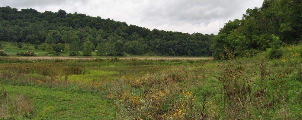 Ryerson Station State Park Plans For Restoration